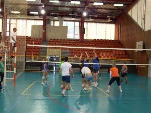 Volejbal 2010